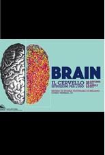 Brain. Cervello, istruzioni per l'uso